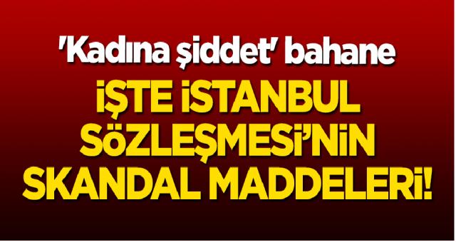 İstanbul Sözleşmesinin Çirkin ve Skandal Maddeleri Yok Artık diyeceksiniz