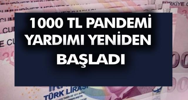 1000 TL pandemi yardımı yeniden başladı! E-Devletten Başvuru Yaparak Hemen Alabilirsiniz…