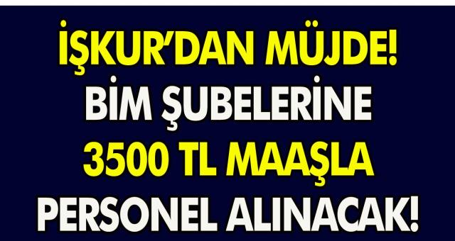 İŞKUR'dan müjde! BİM şubelerine tam 3500 TL maaşla personel alınacak…