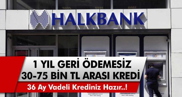 Halkbank'tan milyonlara büyük müjde! Tam 36 ay vade ile 30 ila 75 bin TL arasında kredi fırsatları 1 yıl geri ödemesiz geliyor…