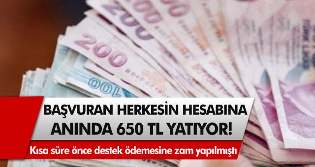 Başvuran herkesin hesabına anında 650 TL yatıyor! Kısa süre önce destek ödemesine zam yapılmıştı…