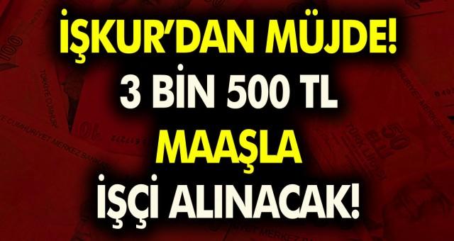 İŞKUR müjdeyi verdi! KPSS şartı olmadan 3 bin 500 TL maaşla personel alınacak…