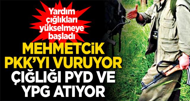 Mehmetçik PKK'yı vuruyor, çığlığı PYD ve YPG atıyor