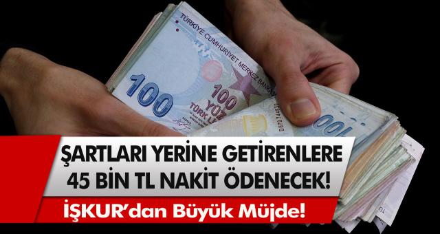 İŞKUR'dan müjde! Gerekli şartları yerine getirenlere tam 45 bin TL nakit ödeme…