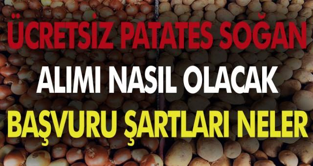 Cumhurbaşkanı Erdoğan'ın açıkladığı patates soğan dağıtımı nasıl yapılacak?