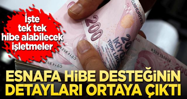 Hangi işletmeler hibe alacak Cumhurbaşkanı Erdoğan'ın açıkladığı pakette neler var