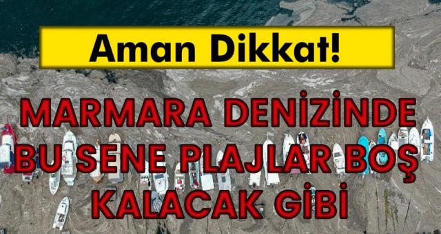 Bu sene Yaz aylarında Marmara Denizinde Denize girip yüzmek pek mümkün olası gözükmüyor
