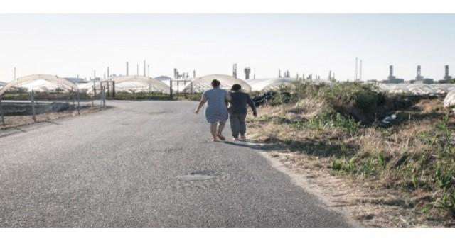 İspanya'nın çilek tarlalarında göçmen kadınlar cinsel istismara maruz kalıyor