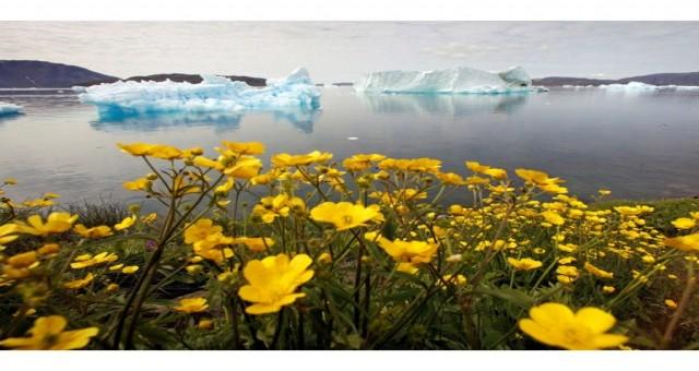 Binlerce bilim insanı, iklim değişikliği noktalarını 'yakında' uyarıyor