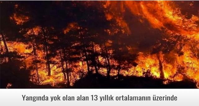 Yangında yok olan alan 13 yıllık ortalamanın üzerinde
