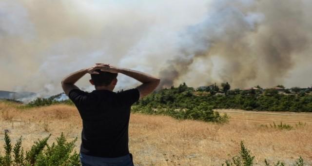 Yakılan ormanlar ve yanan kömür: Türkiye'nin iklim muamması