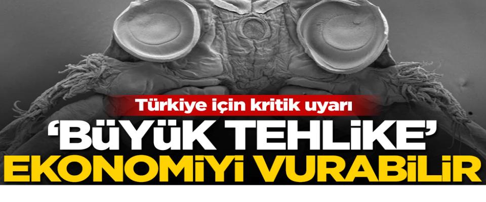 Türkiye büyük tehdit altında! Ekonomi dibe vurabilir