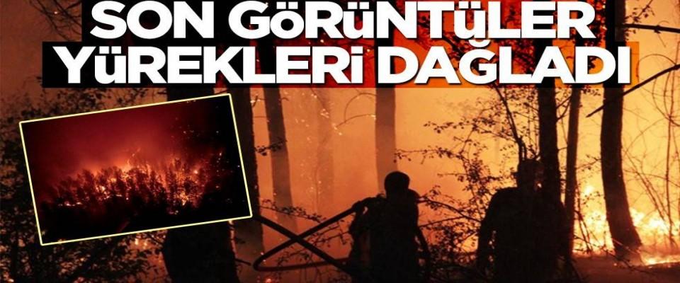Yangın bölgelerinden gelen son görüntüler yürekleri dagladi