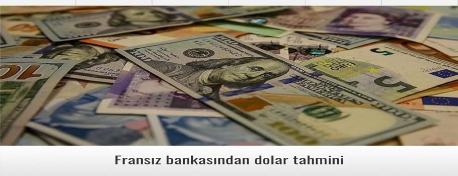 Fransız bankasından dolar tahmini